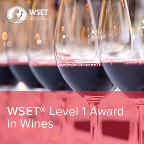 WSET vinska škola - Level 1 Award in Wines