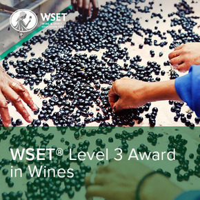 WSET vinska škola - Level 3 Award in Wines
